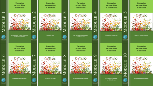 nutrition et cure detox, les 10 modules de la formation