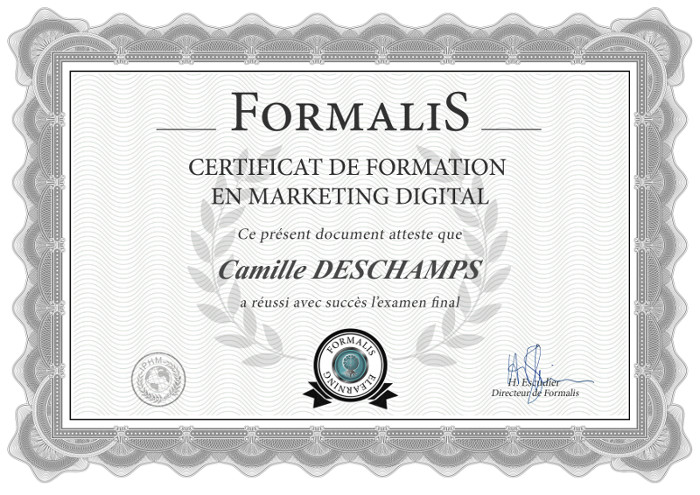 certificat formation marketing digital