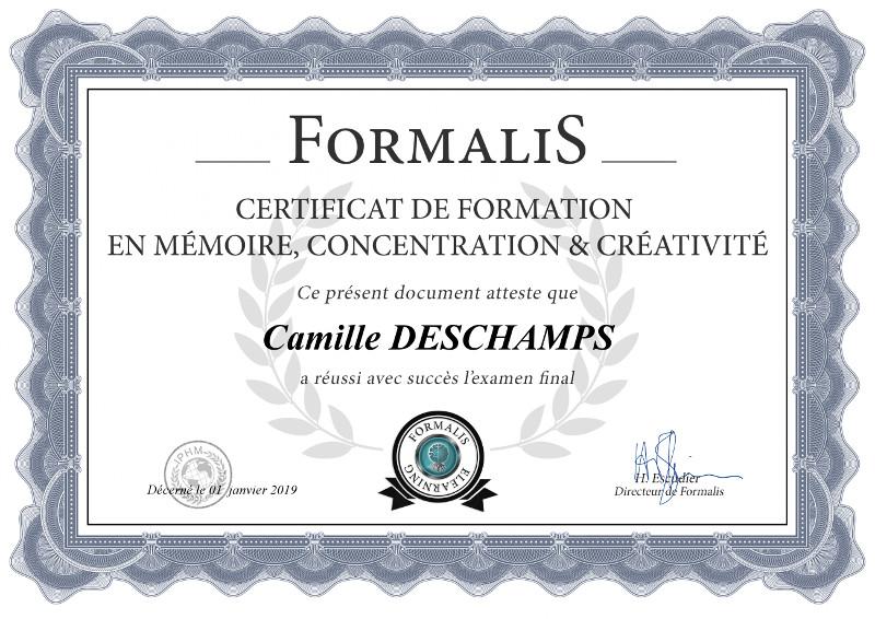 certificat formation mémoire concentration et créativité