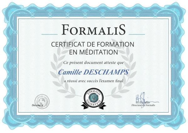 certificat formation meditation