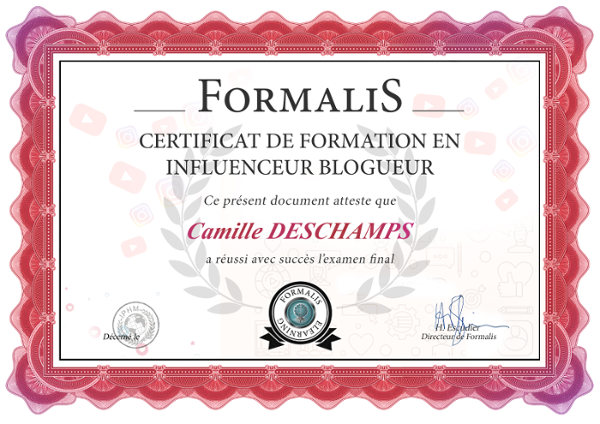 certificat formation influenceurs youtube instagram blog
