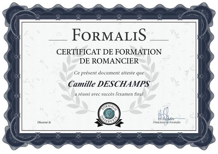 certificat formation écrire un roman