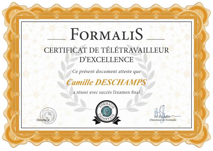 certificat formation télétravailleur d'excellence