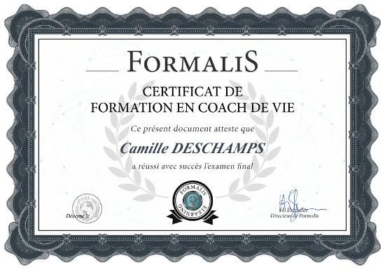 certificat formation coach de vie