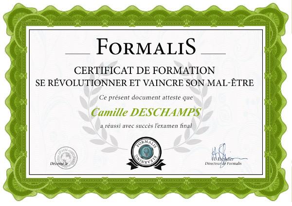 certificat formation vaincre le mal-être et vivre sa révolution