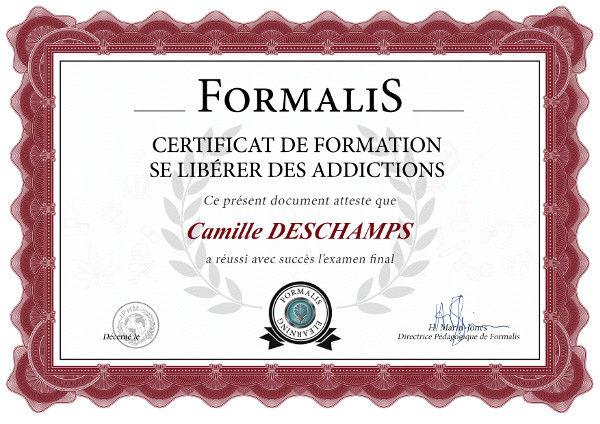 certificat formation addictions